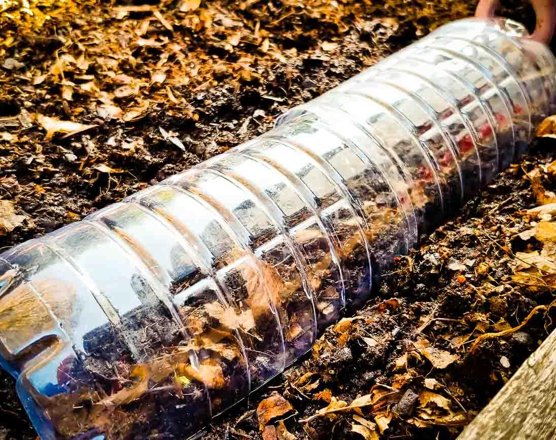 DIY upcycling Plastikflaschen Glashaus Gewächshaus - Mini Glashaus aus alten Flaschen